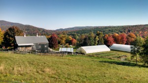 Farm in Fall Foliage
