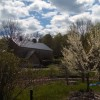 Farm in Bloom