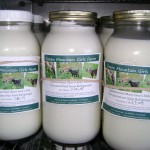 Our pastured-raised faw goat milk