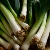 Leeks by Rose Wall