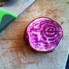 Chioggia Beets..beautiful on the inside