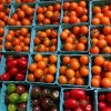 cherry tomatoes colorful