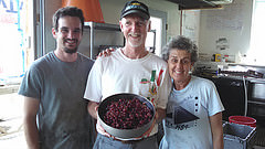 ed with gooseberry harvest with Helen  Larry stowe