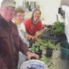 Roy and Liz helping Liva pot up tomatoes