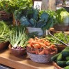 summer produce at farmstand