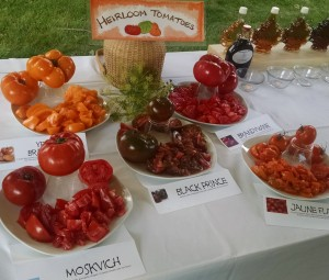 heirloom tomato display