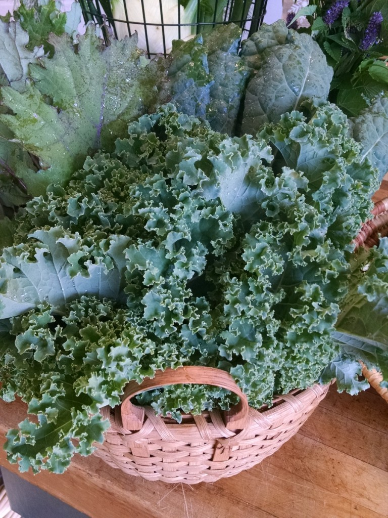 kale in farmstand