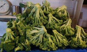 mountain of broccoli