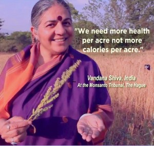 shiva health per acre with photo
