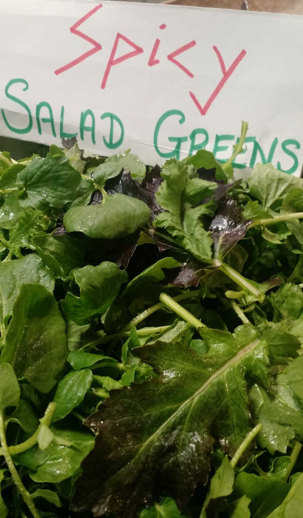 spicy salad greens