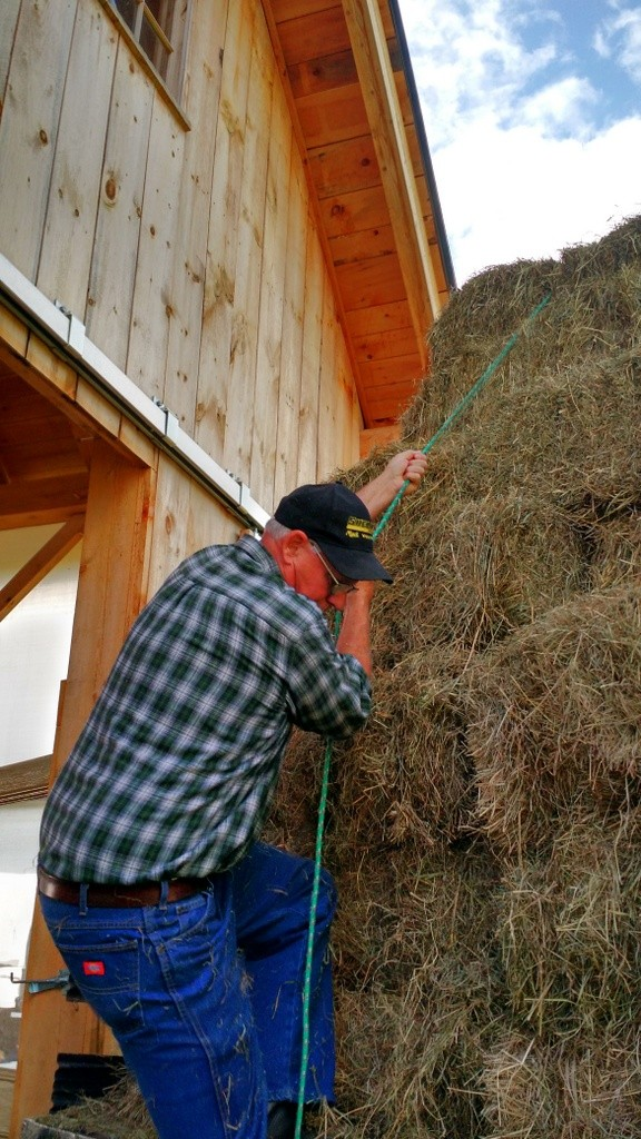 Walt, his kindness and a little hay rappelling