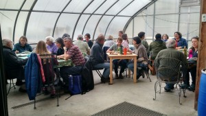 farm supper in greenhouse